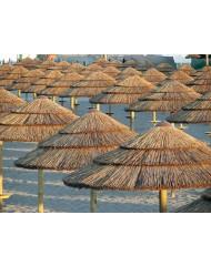 Ομπρέλα θαλάσσης Thatch